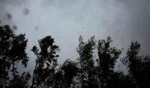 Утром 23сентября вАрхангельске иобласти ожидается штормовой ветер