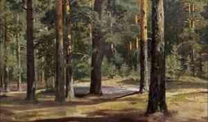 Нетолько «Утро всосновом лесу»: вАрхангельск привезут полсотни подлинных шедевров Ивана Шишкина