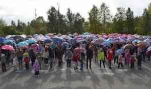 Вельские зонтики: в рамках флешмоба их украсили важской росписью