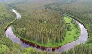 В Архангельской области создали Двинско-Пинежский государственный природный заказник