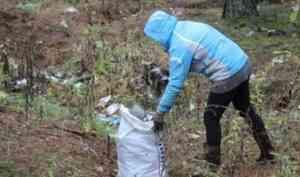 В Шенкурском районе завершается ликвидация несанкционированных свалок