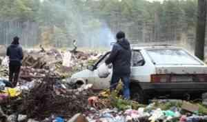 В Шенкурске горит городская мусорная свалка