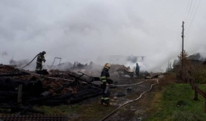 В островной деревне пожаром уничтожены 5 дачных домов
