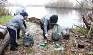 Архангельские активисты убрали большую свалку на берегу Северной Двины