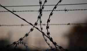 В Шенкурском районе осудили двух мужчин, устроивших пьяный разбой