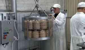 Новое производство запустили висправительной колонии вВельском районе