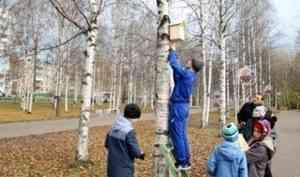 В архангельском парке «Майский» установлены новые скворечники для птиц