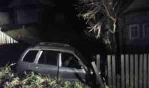 В Вельском районе пьяный водитель улетел в кювет и врезался в дерево