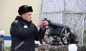 СМИ за высоким забором: о работе журналиста в колонии под Архангельском