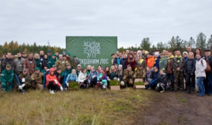 1500 деревьев посажено и 30 гектаров леса освобождено от мусора – итоги акции «Живи, лес!» в Поморье
