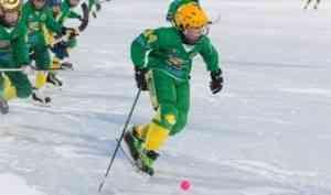 Юных хоккеистов ждет турнир на призы правительства Поморья