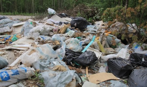 Суд обязал руководство города и области ликвидировать две незаконные свалки в Архангельске