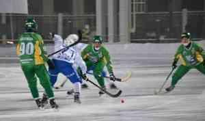 «Водник» насвоём льду переиграл московское «Динамо»