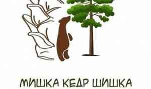 В Гайдаровке подвели итоги творческого конкурса «Мишка. Кедр. Шишка»