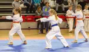 Более 120 каратистов боролись за медали «Северного сияния»