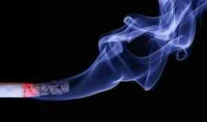 В Пинежском районе в пожаре погиб мужчина