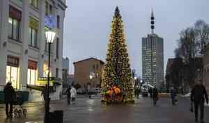 ВАрхангельске наЧумбаровке установили новогоднюю ёлку
