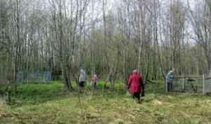 В Коноше новую школу собираются построить на территории старого кладбища