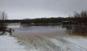 Холмогорский район затопило из-за подъема воды в Северной Двине