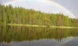 «Природные знатели - 2019»: подведены итоги экологического конкурса