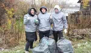 «Попиарились и уехали»: почему в Исакогорке бросили мусор, который собрали волонтеры ОНФ