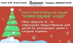 «Новогоднее чудо»: помочь исполнить мечты малышей может каждый