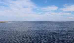 Региональный Роспотребнадзор проверил рыбу изБелого моря нарадионуклиды