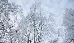 11 декабря в Архангельске похолодает до −5°С