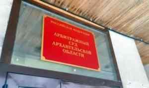 Приведет к затягиванию процесса: суд не принял встречный иск «Технопарка» по Шиесу