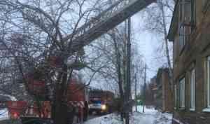 При пожаре вжилом доме вАрхангельске погибли два человека