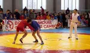 Большой турнир посамбо состоялся вВельске