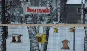 В Карпогорах состоялось торжественное открытие «Птичьей столовой»
