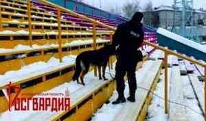 Сотрудники архангельского ОМОН приняли участие в обеспечении общественной безопасности на матче чемпионата России по хоккею с мячом