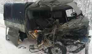 В Лешуконском районе грузовая «Скания» столкнулась с УАЗом: один человек погиб