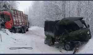 В Лешуконском районе в аварии с грузовиком погиб мужчина