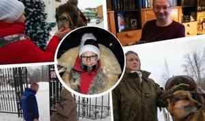 Командировка на Шиес, Морозилка и добрые дела: журналист 29.RU — о том, что запомнилось в 2019 году