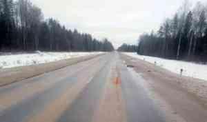 В Плесецком районе водитель оставил на дороге насмерть сбитого пешехода