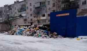 Котлашане выйдут на массовый пикет против мусорной реформы и регионального оператора