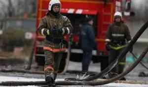 Добровольной пожарной охраной за 2019 год спасено 380 человек