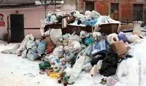 «Спецавтохозяйству» в Архангельске нужны 800 мусорных контейнеров