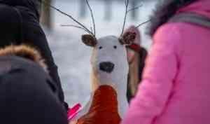 Эколята Северодвинска готовы к конкурсу дикого северного оленя