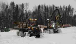 Лесосека, олени, хоккей: вУстьянский район приехали участники совещания посовершенствованию лесного законодательства
