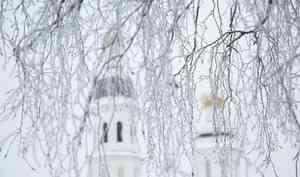 9января вАрхангельске потеплеет до+1°С