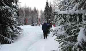 Двух пенсионерок из Коми пытаются лишить права на владение землей в районе станции Шиес