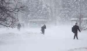 22 февраля в Архангельске пройдёт дождь со снегом