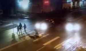 Шла следом за семьей с ребенком: появилось видео, как Toyota сбила архангелогородку с тремя собаками