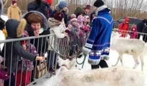 День дикого северного оленя: в Северодвинске прошел семейный экологический праздник