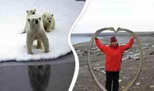 «Первый год ходила без ружья»: архангелогородка — о том, как вести себя при встрече с белым медведем