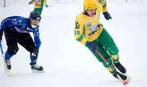 Архангельский «Водник» занял третью строчку чемпионата России по хоккею с мячом