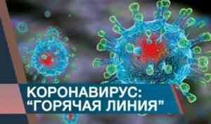 В Архангельской области работает круглосуточная «Горячая линия» по коронавирусной инфекции